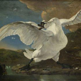 Kunstgeschiedenis in vogelvlucht